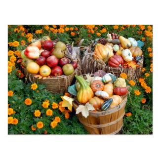 Cestas de fruta y de verduras del otoño postal