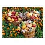Cestas de fruta y de verduras del otoño postales
