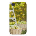 Cestas de manzanas en huerta iPhone 4/4S fundas