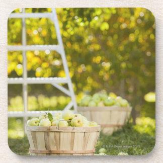 Cestas de manzanas en huerta posavasos