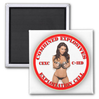 CEXC Combined Explosives Exploitation Cell CIED Refrigerator Magnets