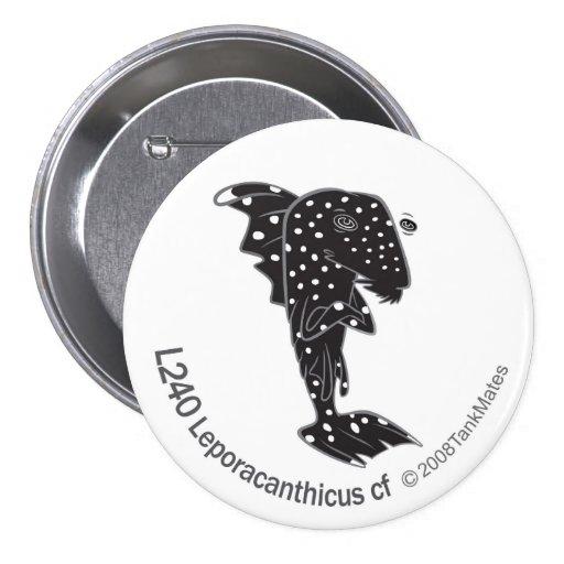 Cf de TM-05-L240 Leporacanthicus Pins