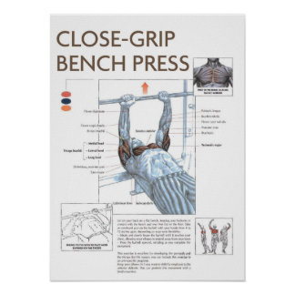 CG Bench Press Anatomy Exercise Instruction Poster