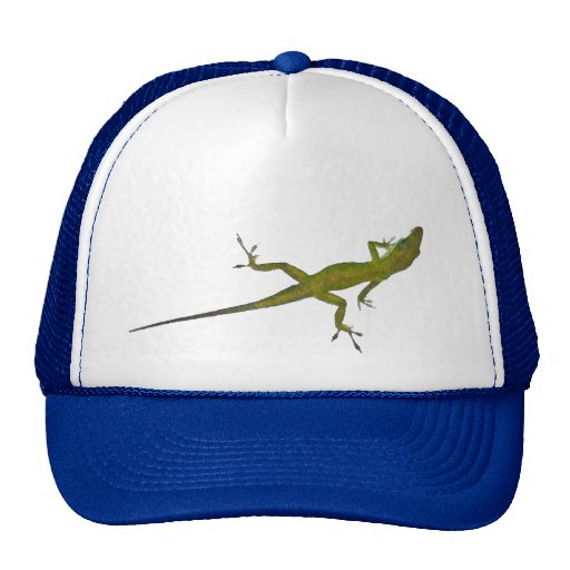 CG- Lizard Hat