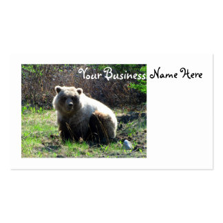 CGB Chubby Grizzly Bear Business Card