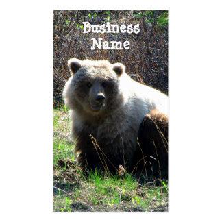 CGB Chubby Grizzly Bear Business Card