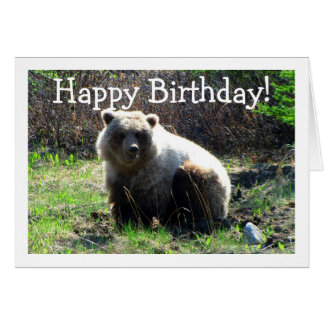 CGB Chubby Grizzly Bear Card