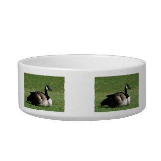 CGR Canada Goose Resting Cat Food Bowls