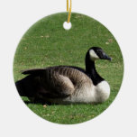 CGR Canada Goose Resting Christmas Tree Ornaments