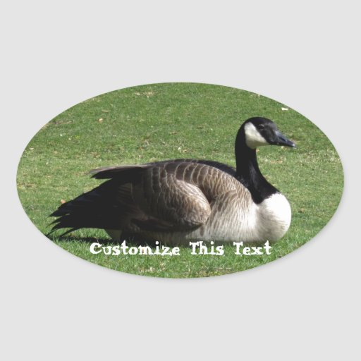 CGR Canada Goose Resting Oval Sticker