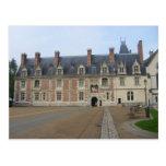 Ch�teau de Blois - Postal