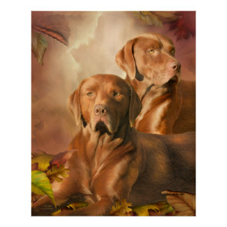 Cha Cha - The Chocolate Lab Art Poster/Print Poster