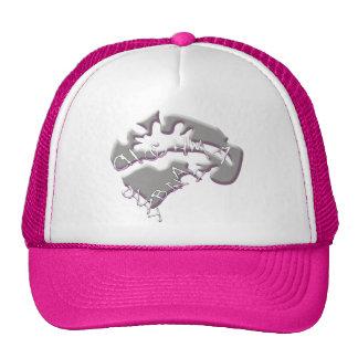 Chabad Trucker Hats
