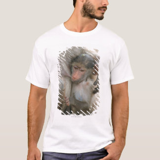 Chacma Baboon, Papio ursinus with young, Kruger T-Shirt