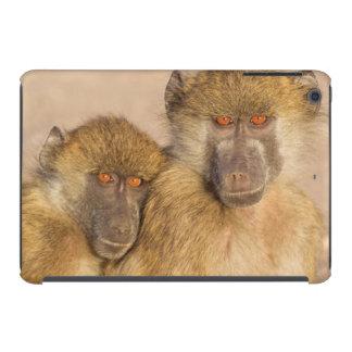 Chacma Baboon, two subadults in the early morning iPad Mini Retina Case