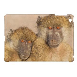 Chacma Baboon, two subadults in the early morning iPad Mini Cover