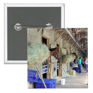 Chad Brown Stables 2 Inch Square Button