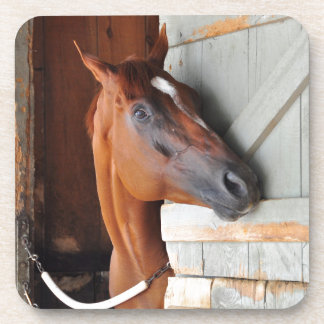 Chad Brown Stables Drink Coaster