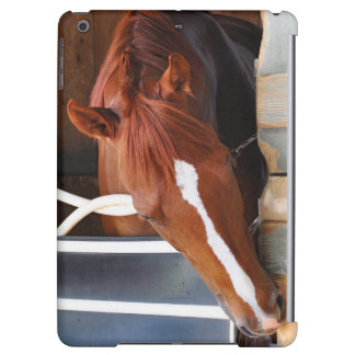 Chad Brown Stables iPad Air Cases