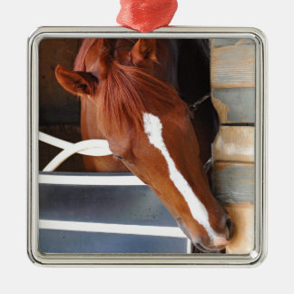 Chad Brown Stables Metal Ornament
