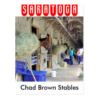 Chad Brown Stables Postcard