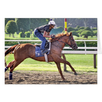 Chad Brown Workouts during Saratoga 150 Card