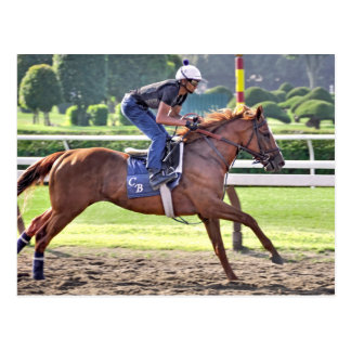 Chad Brown Workouts during Saratoga 150 Post Card