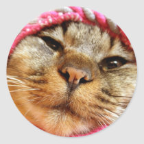 Chad of pink hat classic round sticker