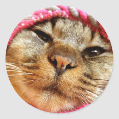 Chad Of Pink Hat Classic Round Sticker at Zazzle