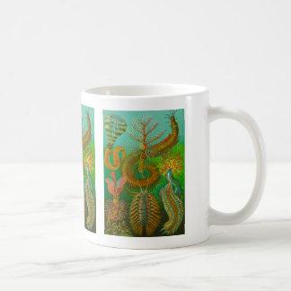 Chaetopoda Coffee Mug