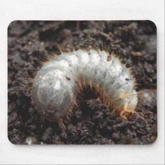 Chafer Larva Mouse Mat