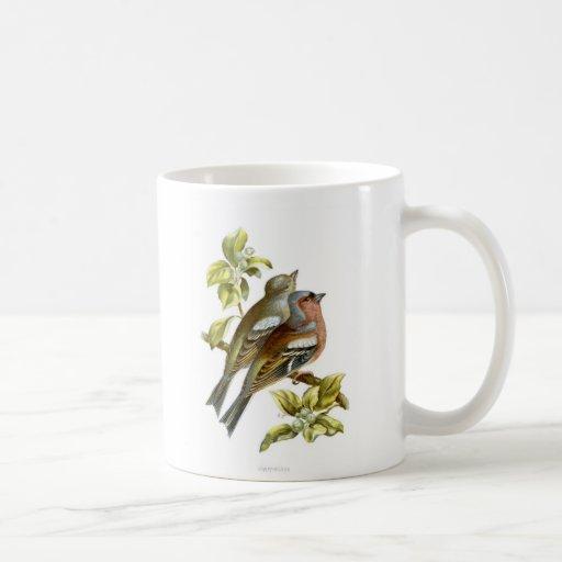 Chaffinch Coffee Mugs