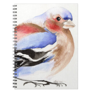Chaffinch colorido 2011 libretas espirales