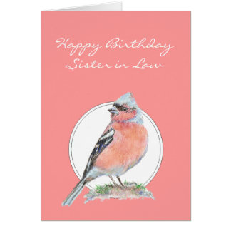 Chaffinch lindo, cuñada del cumpleaños tarjetón