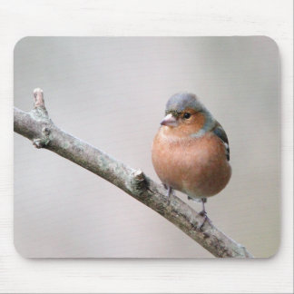 Chaffinch Mouse Pad