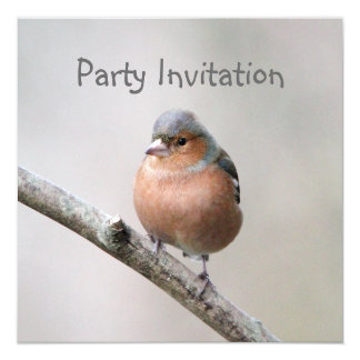 Chaffinch Party Invitation