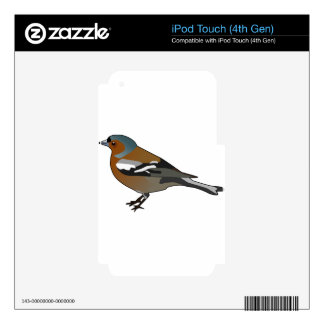 chaffinch skins for iPod touch 4G