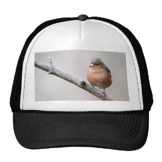 Chaffinch Trucker Hat