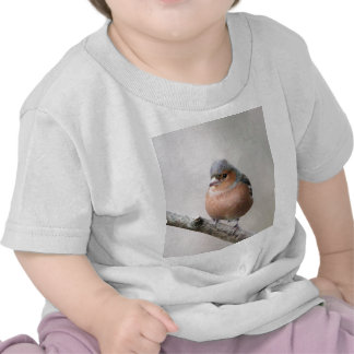 Chaffinch Tees