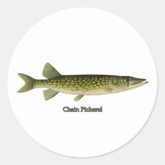 Chain Pickerel Illustration Classic Round Sticker