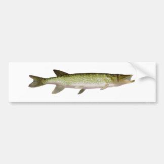 Chain Pickerel Photo Bumper Sticker