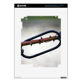 Chained-and-painfull1072 CHAINS ROSE THORNS SYMBOL Skins For iPad 3