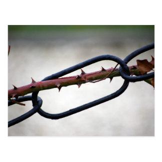 Chained-and-painfull1072 ENCADENA SÍMBOLO COLOR DE Postales