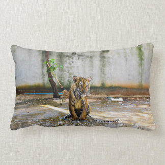 Chained Tiger Pillows