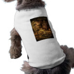 Chair - The chair and the stove Pet T Shirt