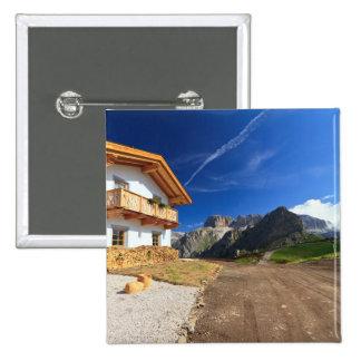 chalet in Dolomites Pins