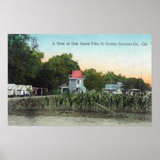 Chalet SceneEl Verano, CA de la arboleda del roble Poster