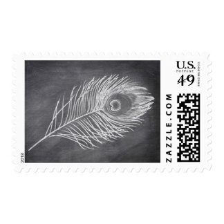 Chalk Board Peacock Feather Postage