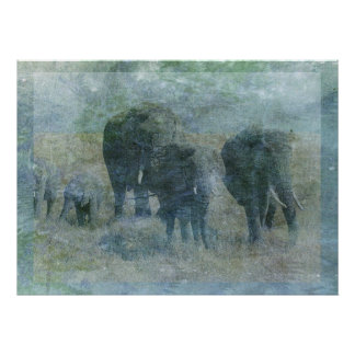 Chalk Elephants Poster