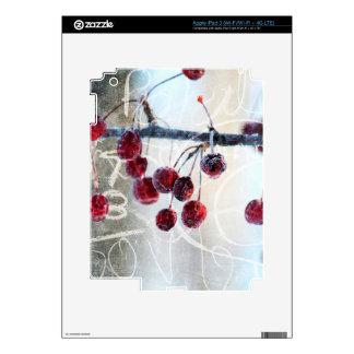 Chalkboard Berries iPad 3 Skins